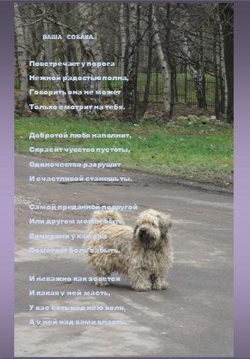 Ваша-собака