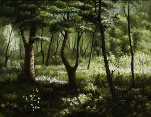 10 v-lesu