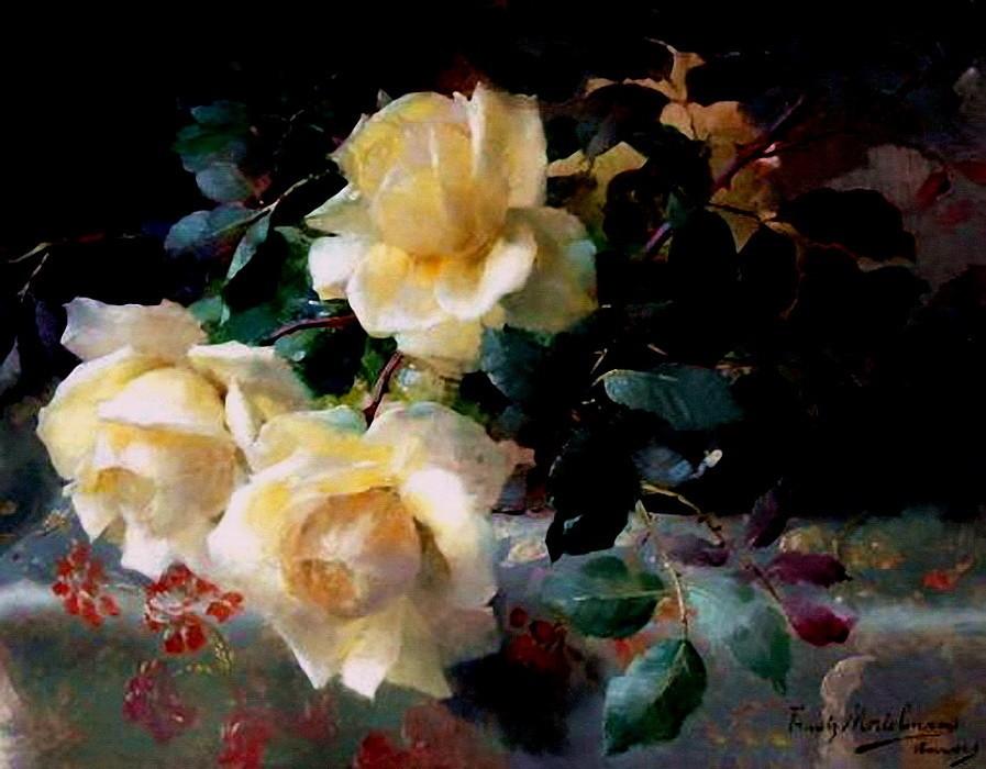 белые розы бельгийского х